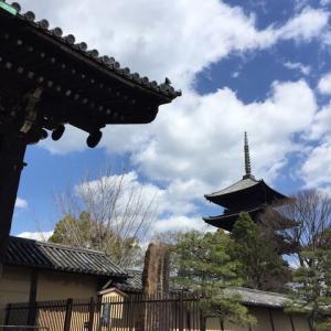 東寺 特別拝観