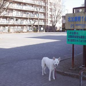 Vol.1488 北加瀬第1公園