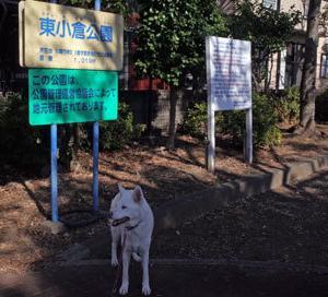 Vol.1508 東小倉公園