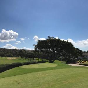 久々の更新はハワイでゴルフ