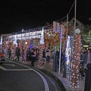 藤枝市 イルミネ-ション   民芸家具