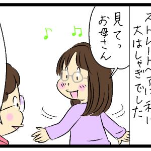 くせ毛と私②(ミスター・ハビットとの出会い)