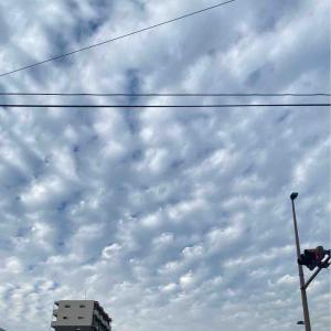 昨日のうろこ雲