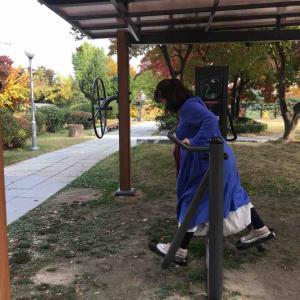 ソウルの公園のトレーニングマシンで遊ぶ2019年
