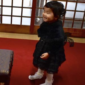 看板娘が愛犬猫用おせち料理のご祈願に!兵庫県小野住吉神社さまに/チワワの幸ちゃん力くんワンバナへ