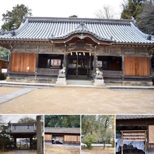 イチョウの葉の黄色いじゅうたん!とっても綺麗!小野住吉神社神社/ポメプーのアイビーちゃんご来店!