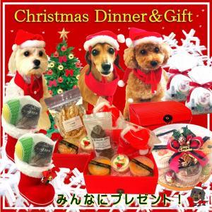 愛犬用クリスマスギフト!人気ベスト3!サンタブーツ 追加発注/ペキニーズのゆずちゃんワンバナ来店