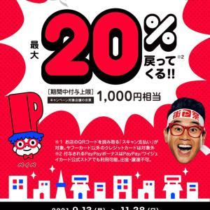 街角PayPay対象/トイプーLucaちゃん/フレブルCOCO&マルチーズMOMOちゃんワンバナ