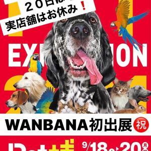 Petペット博大阪会場2021も最終日!20日祝日はWANBANA店舗は臨時休業!おまちがいなく