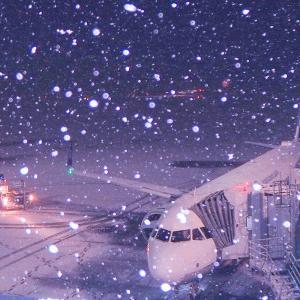 空港展望デッキで雪見