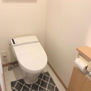 インフル予防接種と、トイレの脱臭カートリッジ、取り替えてる??