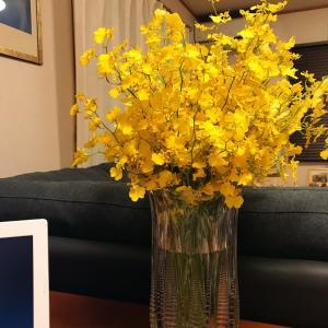 黄色い花をみつめながら