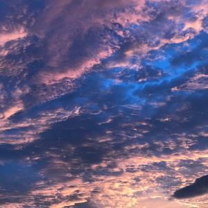 夕陽がピンク色に染まるとき