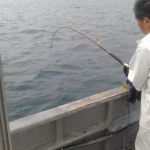 モロコ釣りに♪