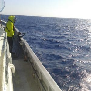 モロコ釣り開始♪