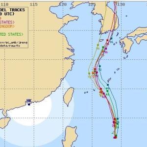 大型台風9号が・・