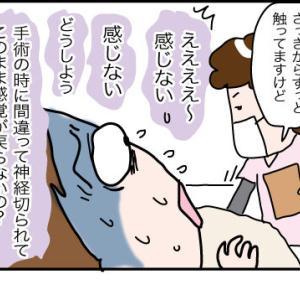 日本に帰りたいけど〜その12姉の手術5