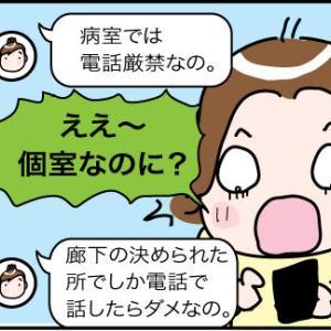 日本に帰りたいけど〜その14姉の手術7