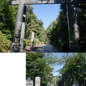 鎌倉と春日部の「遠くて近い」関係とは何か?…春日部八幡は最低5つの「彫られたもの」に着目して散歩
