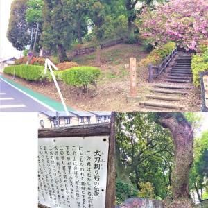 牛若丸と弁慶の没から832年…太平山神社の手前にある、栃木の隠れたパワースポットに行こう!