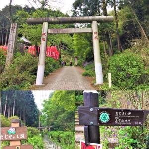 やっぱり神様の恵みは「花よりダンゴ」?…あじさい坂を上って、太平山神社の見晴らし茶屋で3つの名物