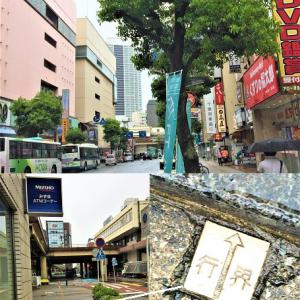 津田沼の市境でハマった「飲むティラミス」エッグコーヒー …パルコ6階でハノイ式コーヒータイム♪