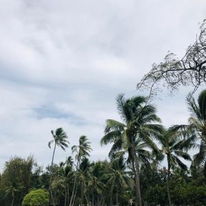 全米で最も感染者が増えているハワイ