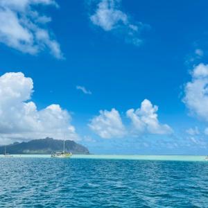 同調圧力とハワイの規制