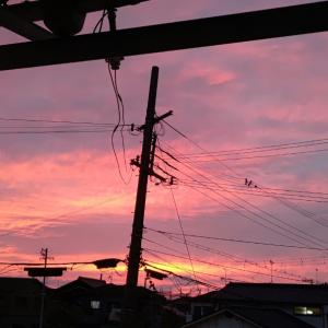 夕陽...♪*゚