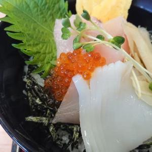 ザ・どん 本山店の季節限定「びんちょう鮪といか丼&味噌汁セット」