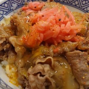 吉野家の牛丼 並盛+お新香セット+玉子