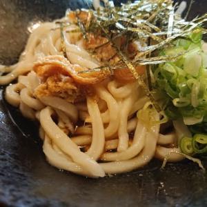 岡崎 麺処さんぞうの日替わりランチ ~おろしぶっかけうどん定食~
