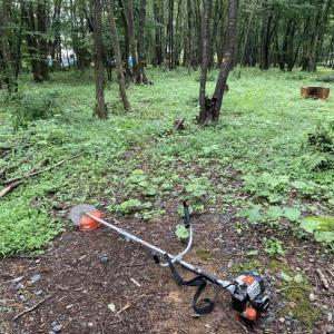 雨が止んだんで、草刈してやった