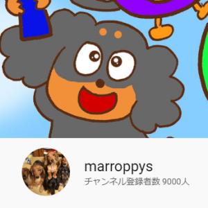 YouTube9000登録ありがとうございます💝