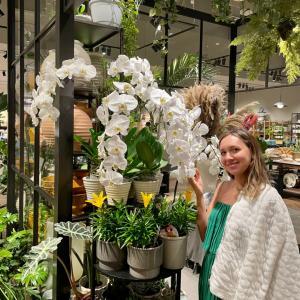 H&Mの花や植木がなかなか良かった!