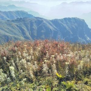 生まれ故郷の山々は こんなに美しいだ