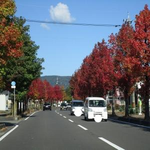 Oさんちの駐車場整備工事、コンクリート打ち開始!