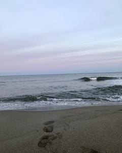 2019年秋冬サーフ始めました!