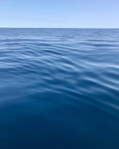 穏やかすぎる海は釣れない・・・