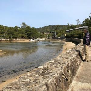 中年の日本帰郷 Vol.30 静かな宮島で念願のプリプリ牡蠣