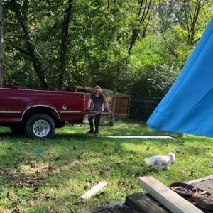 ヤギ牧場への道~最新・裏庭プロジェクト