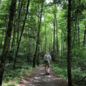 中年の夏休み~North Carolina州の山奥からリアルタイム「プロローグ」