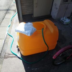 昨日換水しました。