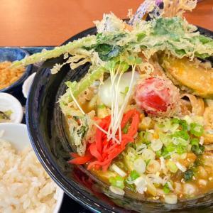 野菜天ぷら温玉カレーうどん