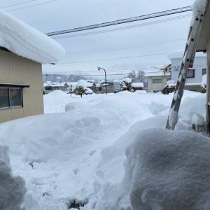 雪かき3日目