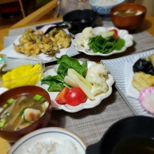 今日は【天ぷら】の晩ごはん