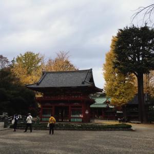 スマートウォッチを装着して東京の下町、谷根千をガシガシ歩いてみた◆武道家パパの育休後日記