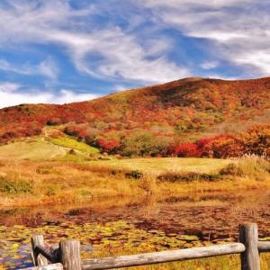 美しい紅葉・10月(過去の写真~)
