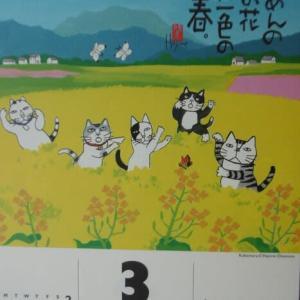 3月(弥生)北海道大荒れの2日