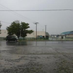 久しぶりのまとまった雨
